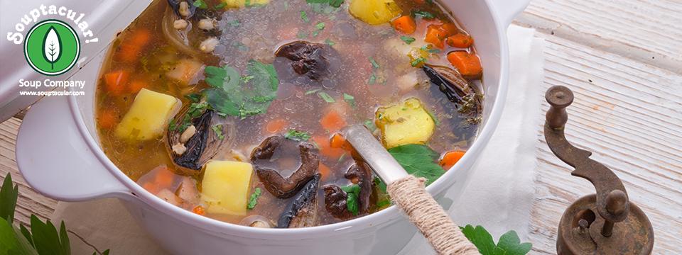 Changing to Vegetarian and Vegan Soup